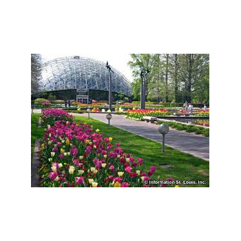 garden_big